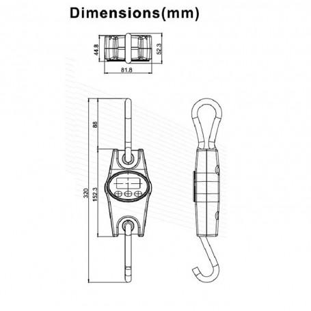 Dynamomètre Crochet peseur jusqu'à 200 kg